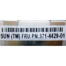 Серверная память SUN (FRU PN 371-4429-01) 4096Mb (4Gb) DDR3 ECC в Черном, память для сервера SUN FRU P/N 371-4429-01 (Черное)