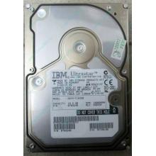Жесткий диск 18.2Gb IBM Ultrastar DDYS-T18350 Ultra3 SCSI (Черное)