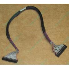 FDD-кабель HP 271946-006 для HP ML370 G3 G4 (Черное)