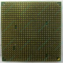 Процессор AMD Sempron 3000+ (1.6GHz) SDA3000IAA3CN s.AM2 (Черное)